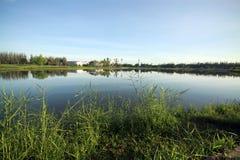 Jezioro przy parkiem fotografia royalty free
