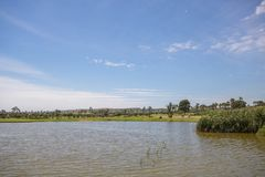 Jezioro przy polem golfowym pod niebieskim niebem na letnim dniu w Hiszpania zdjęcie stock