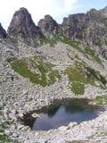 jezioro retezat lodowaty obraz royalty free