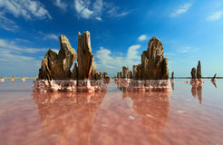 jezioro sól Fotografia Stock