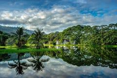 jezioro Taiping ogrodniczy obraz royalty free