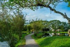 jezioro Taiping ogrodniczy zdjęcia royalty free