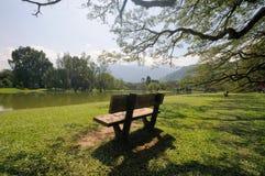 jezioro Taiping ogrodniczy fotografia stock