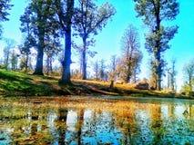 Jezioro w Algeria Fotografia Royalty Free