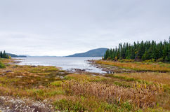 Jezioro w chmurzącym dniu Zdjęcie Stock