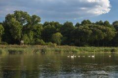 Jezioro w Chudow Zdjęcia Stock