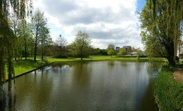 Jezioro w dordrecht Zdjęcie Royalty Free
