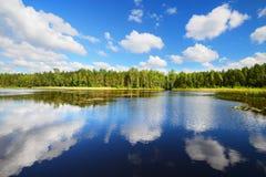 Jezioro w Estonia w pięknym letnim dniu Zdjęcia Stock