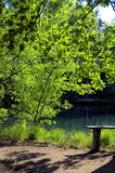 Jezioro w Europa Fotografia Stock