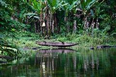 Jezioro w Filipiny Obrazy Royalty Free