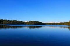 Jezioro w forrest Zdjęcia Royalty Free