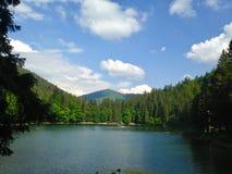 Jezioro w górach, niebieskie niebo, chmury, zieleni drzewa fotografia royalty free