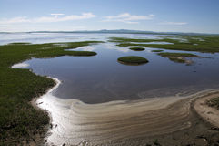 Jezioro w Hulunbuir obszarze trawiastym Fotografia Royalty Free