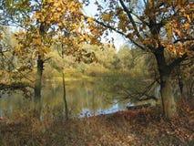 Jezioro w jesieni Obraz Stock