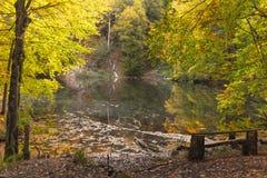 Jezioro w jesieni Qaranohur lasowym jeziorze zdjęcie stock