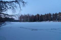 Jezioro w lasowej zimie śnieg Zmierzch fotografia royalty free