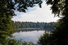 Jezioro w lesie Fotografia Royalty Free