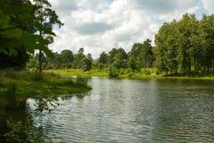 Jezioro w lesie Zdjęcia Royalty Free