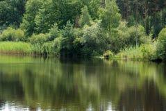 Jezioro w lesie Zdjęcie Royalty Free