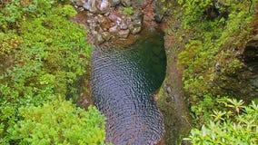 Jezioro w lesie wzdłuż levada wycieczkuje ślad na maderze zdjęcia stock