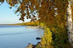 Jezioro w miasto jesieni parku Fotografia Royalty Free