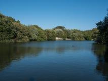 Jezioro w miasto parku Porto, Portugalia w Matosinhos zdjęcie stock