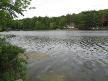 Jezioro w montians Fotografia Royalty Free