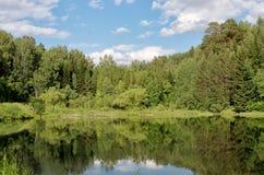 Jezioro w ogródzie botanicznym Zdjęcie Stock