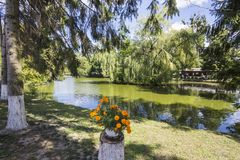 Jezioro w parku Lutsk Ukraina fotografia royalty free