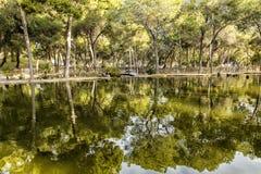 Jezioro w parku w zieleń krajobrazie Zdjęcie Royalty Free