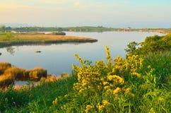 Jezioro w ranku Fotografia Stock