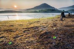 Jezioro w ranku Zdjęcia Stock