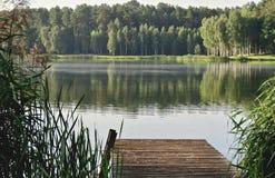 Jezioro w ranku w zielonych brzmieniach Zdjęcia Stock