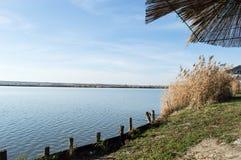 Jezioro w rezerwacie przyrody Zdjęcia Stock