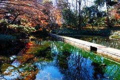 Jezioro w spadek Fotografia Royalty Free
