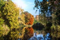Jezioro w spadku Fotografia Stock