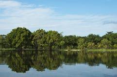 Jezioro w wiosna parku Zdjęcia Royalty Free