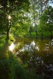 Jezioro w wiosna parku Zdjęcia Stock