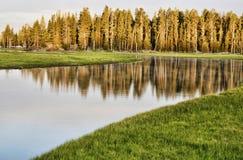 Jezioro w Yellowstone parku narodowym Obraz Stock