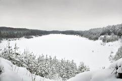 Jezioro w zimie Zdjęcie Stock