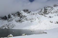 Jezioro w zimie Fotografia Royalty Free