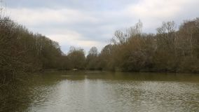 Jezioro w zimie zbiory