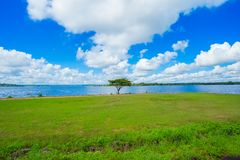 Jezioro, woda, lato, łąka, plaża fotografia royalty free