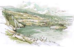 Jezioro z birds-2 royalty ilustracja