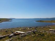 Jezioro z dryftowym drewnem fotografia royalty free
