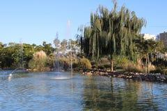 Jezioro z fontannami i wierzbami zdjęcia stock