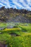 Jezioro z gorącą wodą w Parkowym Landmannalaugar obraz stock