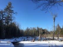 Jezioro z śniegiem Fotografia Royalty Free