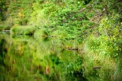 Jezioro z odbiciem Obrazy Royalty Free