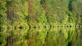 Jezioro z odbiciem Obraz Royalty Free